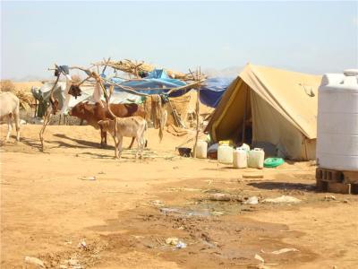 Sinai Bedouin camp