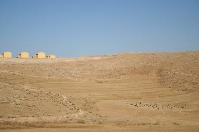 Israeli settlement, Palestinians grazing sheep nearby